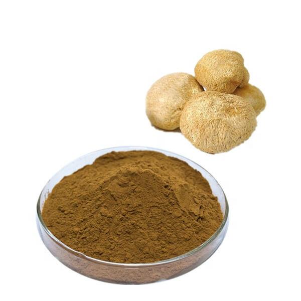 korálovec ježatý hericium extrakt